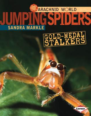 Jumping Spiders By Markle, Sandra